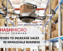 6 Strategies to Increase Sales in Wholesale Business