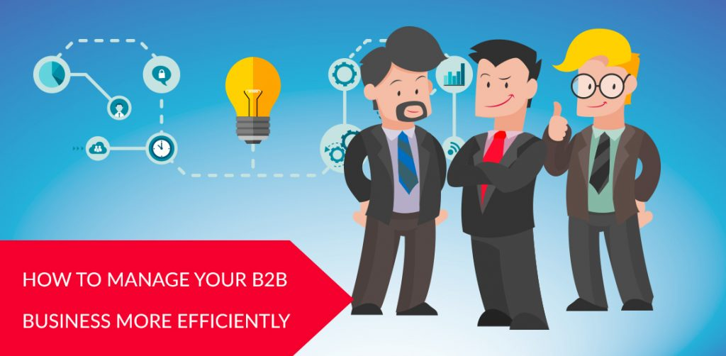 How to manage your B2B business more efficiently?
